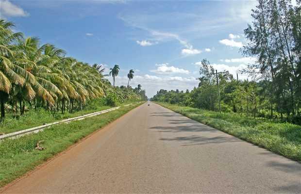 Carretera Caibarién-Yaguajay