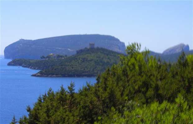 Faro di Cabo Caccia