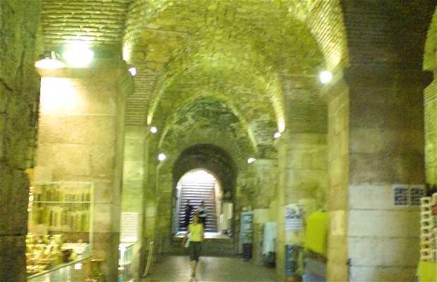 Ossature du Palais