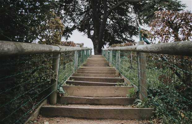 Parque Michel d'Ornano