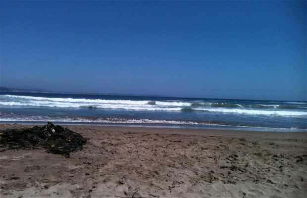Playa Los Coirones