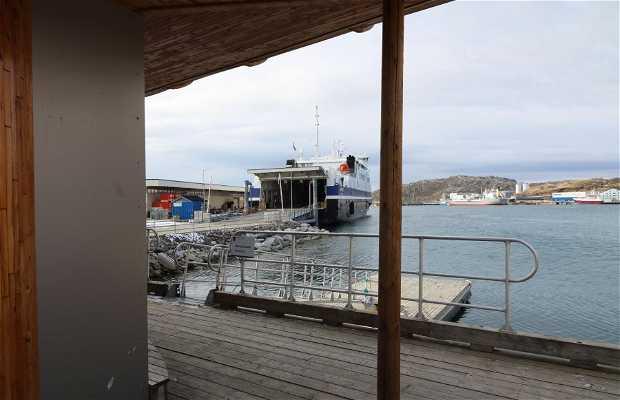 Puerto de Bodo-Maritime AS