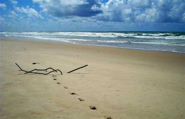 Spiaggia Saco