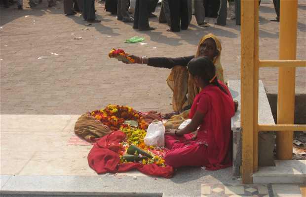 Love Festival in India
