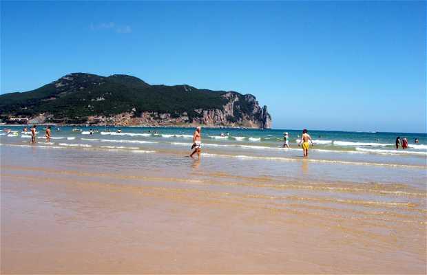 Playa de Salvé