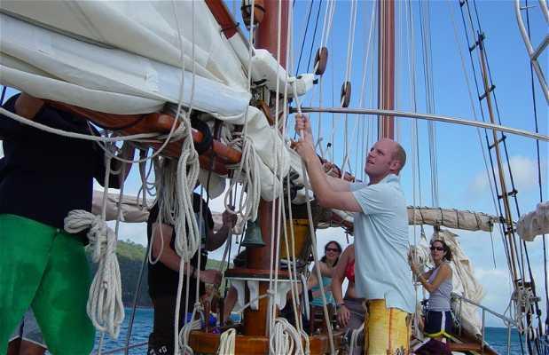 Crucero por las islas Whitsundays