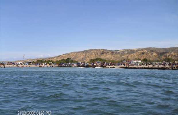 Araya Península