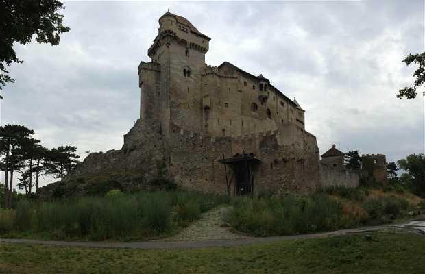 Castillo de Liechtenstein