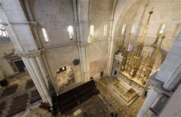 Visita a los tejados de la Catedral de Tarragona