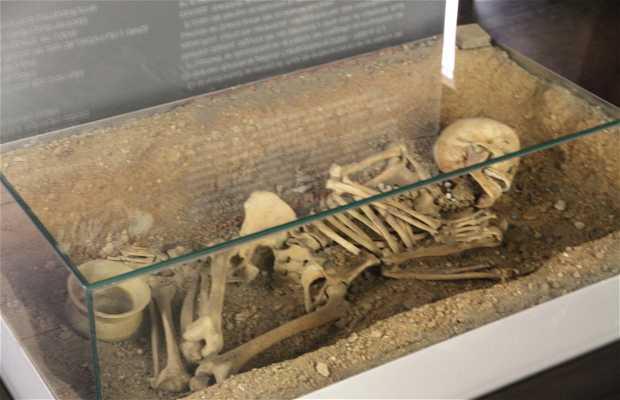 Musée d'archéologie de Álava