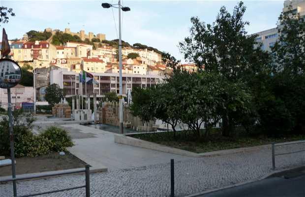 Martim Moniz square
