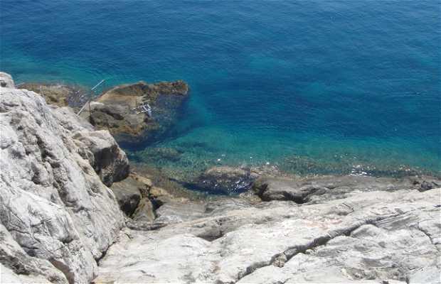 Costa della Dalmazia