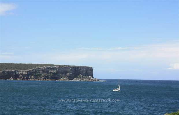 Sydney Harbour National Park Lockout