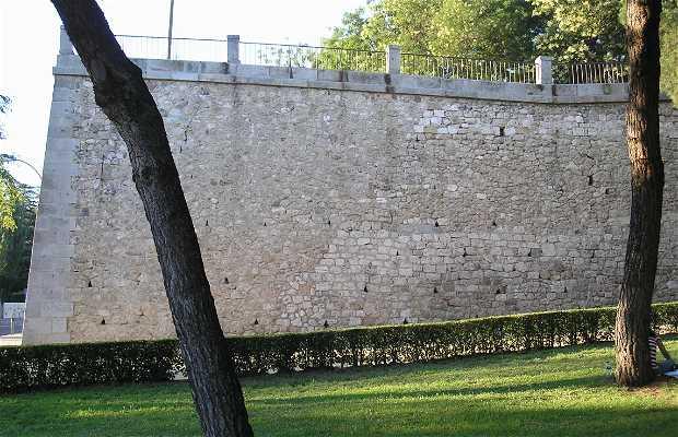 Wall of La Cuesta de la Vega