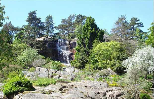 Jardim Botânico de Gotemburgo