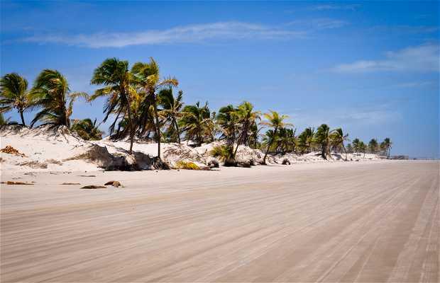 Playa de Mangue Seco