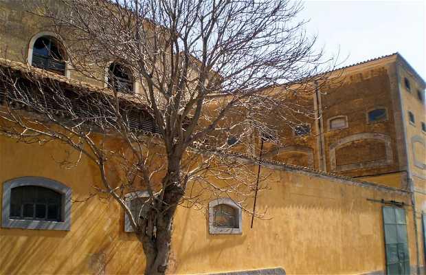 Château de Faro