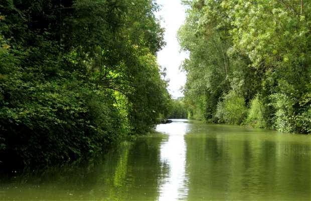 Marshlands of Poitou
