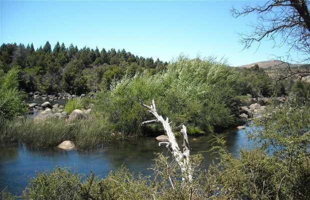 Pulmari river