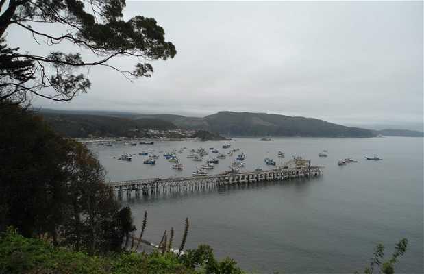 Puerto de Lota