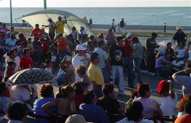 Il carnevale di Campeche