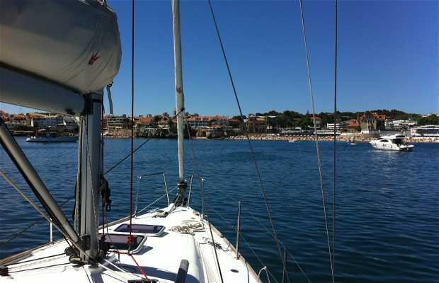 Marina of Cascais