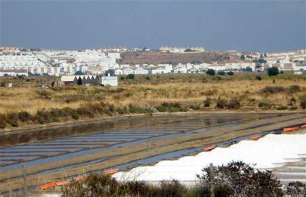 Salinas de Castro Marim
