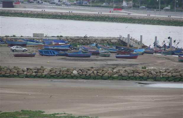 Puerto de pesca