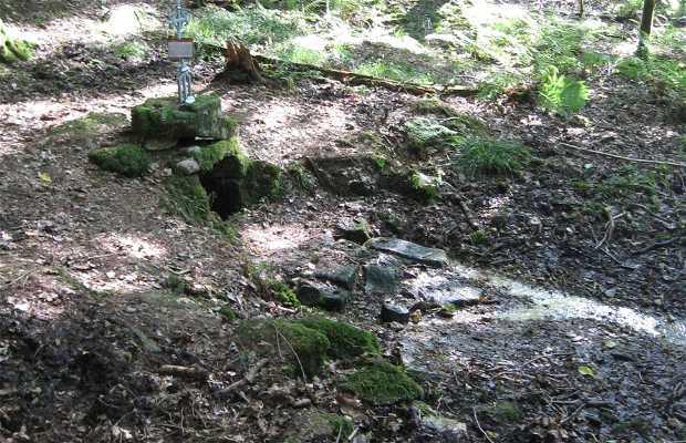 Fontaine du Frêne