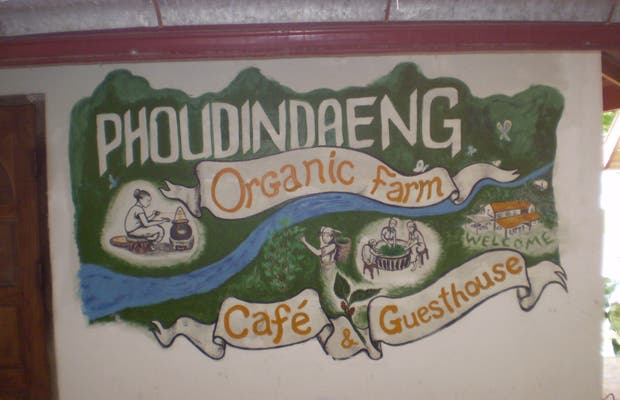 Organic Farm Restaurant, Vang Viang