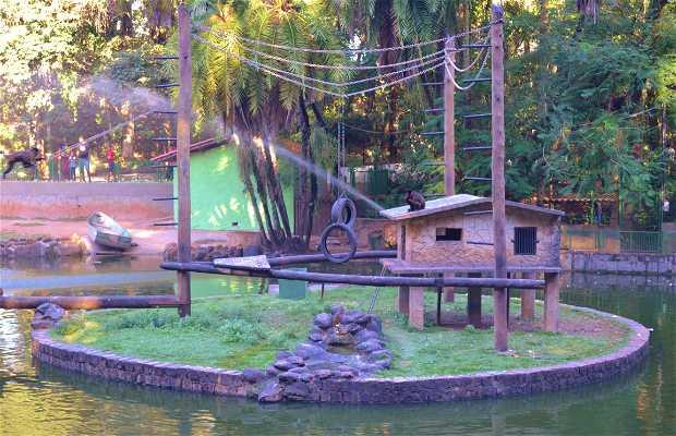 Mini-zoológico de Campinas