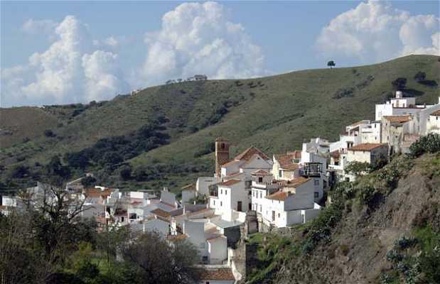 Senderos de Salares ( Sierra Almijara )