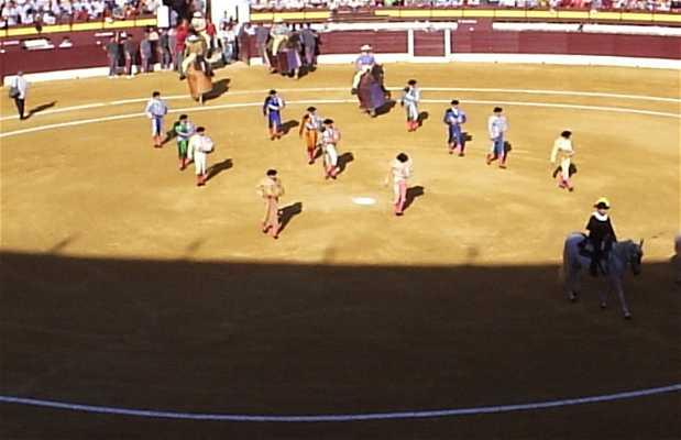 Murcia Bull Square