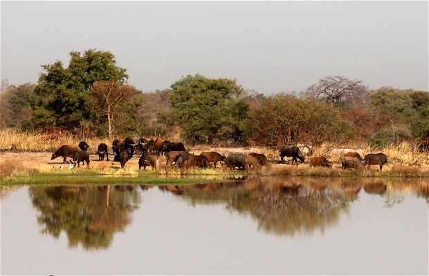Parque nacional de Pendjari