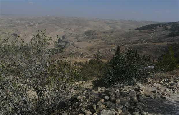 Nebo Mount