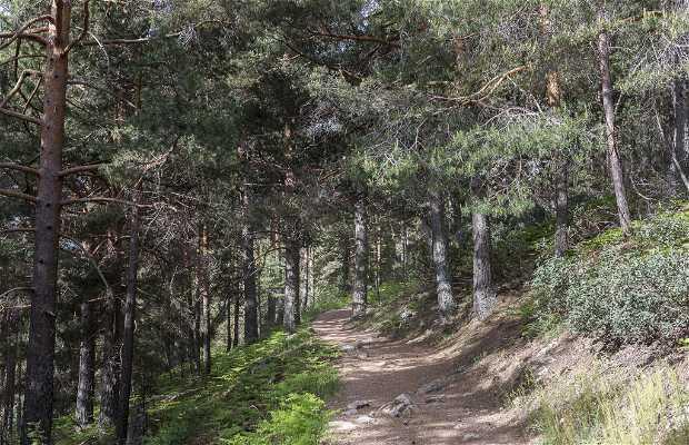 Sendero del Valle de la Barranca