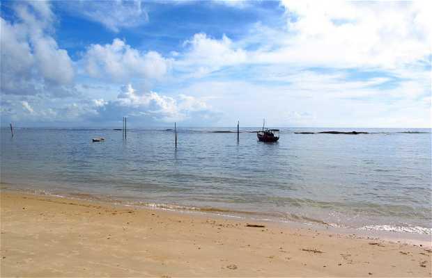 Playa de Delegado