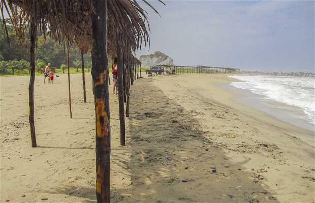 Playa Greysmar