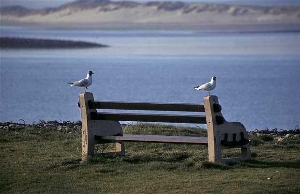 "Lindisfarne o la ""Isla Santa"" (Holy Island)"