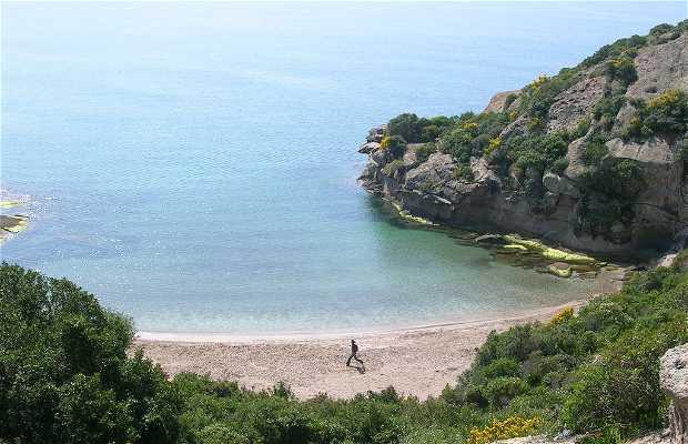 Playa Compultitu