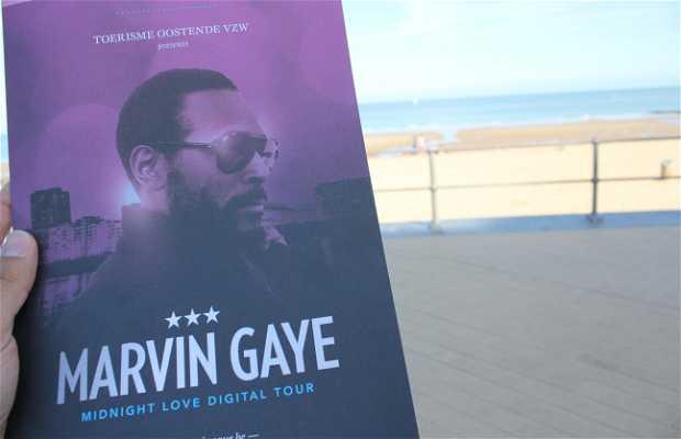 Paseo Marvin Gaye