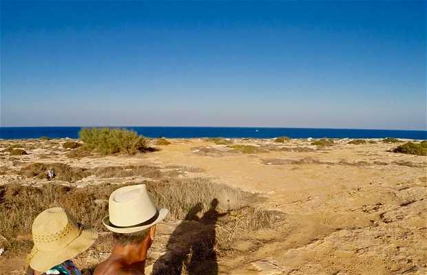 Playa de Piedra de Protaras