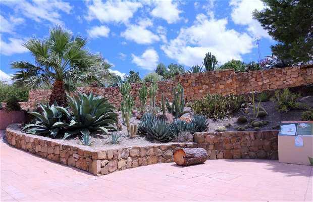 Jardin Botanico de Cactus y Otras Suculentas Mora i Bravard