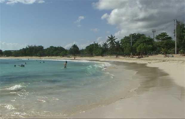 Raisins-Clairs Beach