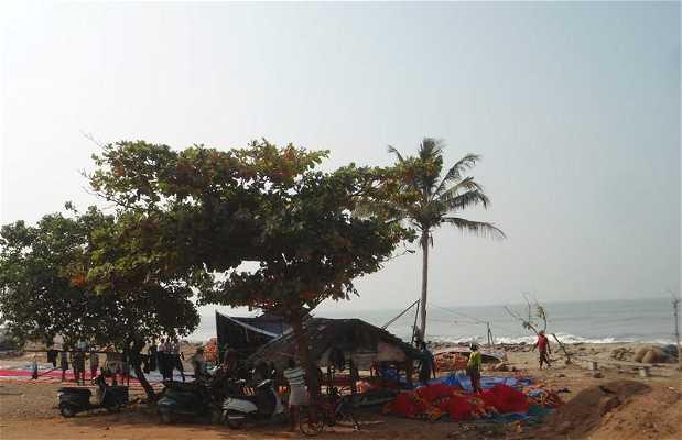 Le petit port de pêche de Calicut