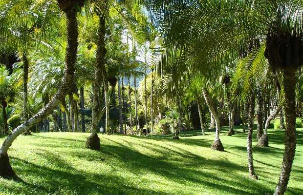 Jardin de Balata
