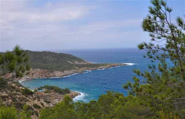 Punta Grossa