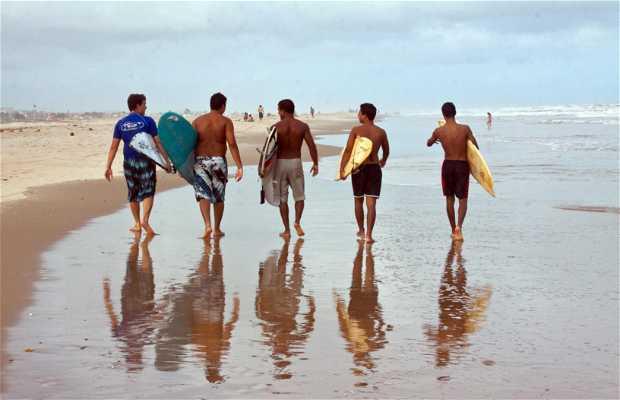 Surfing in Aracajú
