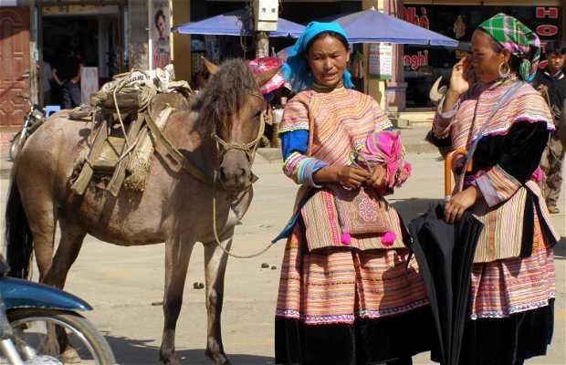 Trekking y mercado en las montañas Hoang Lien