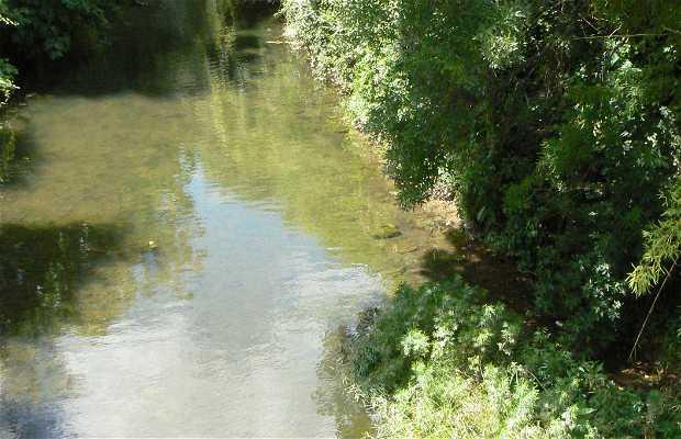 Río Verdanson